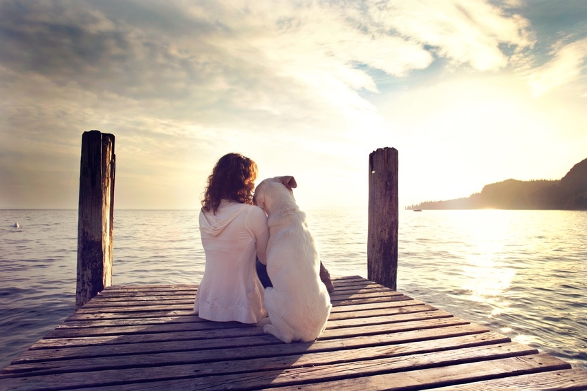 woman embracing sweetly his dog while looking the view