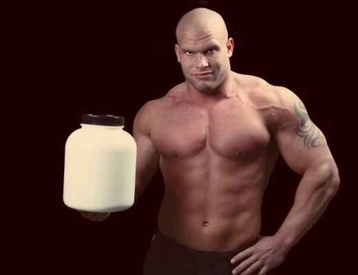 Barf zuviel Protein
