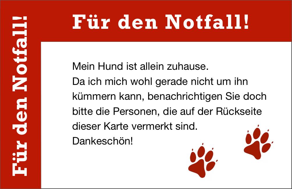 notfall-karte-hund-allein-zuhause-vorderseite
