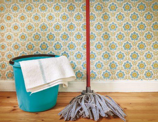 Wohnung mit Hund sauber halten